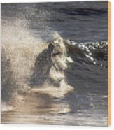 Salt Spray Surfing Wood Print