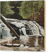 Salt Springs Spring Melt Wood Print