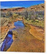 Salt Wash Near Wolf Ranch Arches Np Moab Utah Wood Print