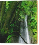 Salto Do Prego Waterfall Wood Print