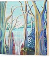 Saltwater Falls 2 Wood Print by Barbara Stirrup
