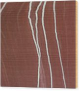 Saltwater Trails #2 Wood Print