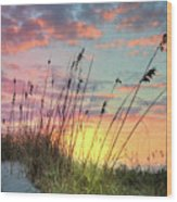 Salty Breeze On The Dunes Wood Print