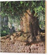 Salvation Wood Print