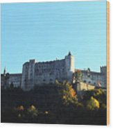 Salzburg Austria 6 Wood Print