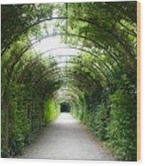 Salzburg Garden Arbor Wood Print