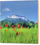 Salzburg Poppies Wood Print