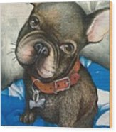 Sammy The French Bulldog Wood Print