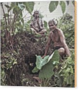 Samoan Planters Wood Print