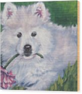 Samoyed Pup With Peony Wood Print