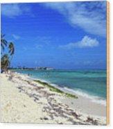 San Andres Island Beach View Wood Print