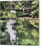 San Antonio River Scenic Wood Print