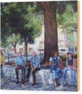 San Antonio Shadowplay Wood Print