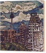 San Antonio Skyline Wood Print
