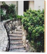 San Antonio Stairway Wood Print