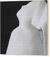 San Antonio Villia Maria Nun Wood Print