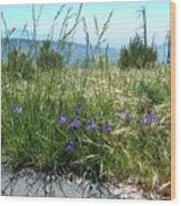 San Bernardino Mountains - Southern California 5 Wood Print