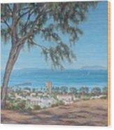 San Buenaventura Wood Print