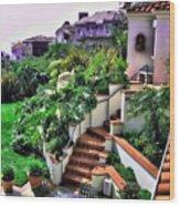 San Clemente Estate Backyard Wood Print