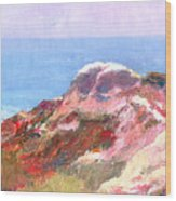 San Clemente Overlook Wood Print