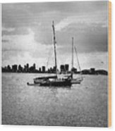 San Diego Bay Sailboats Wood Print
