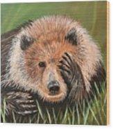 San Diego Bear Wood Print