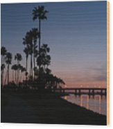 San Diego Sunset With Palm Trees Wood Print