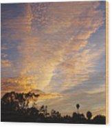 San Diego Sunsrise 4 7/12/15 Wood Print
