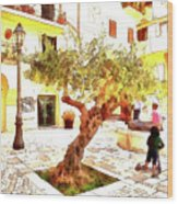San Felice Circeo Olive Tree In The Square Wood Print