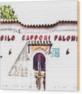 San Felice Circeo School Wood Print