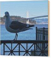 San Francisco - Oakland Bay Bridge - Seagull View Wood Print
