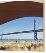 San Francisco Sunday Strollers  Wood Print