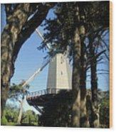 San Francisco Windmills Wood Print