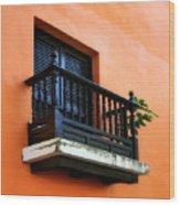 San Juan Window Wood Print