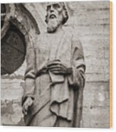 San Lucas Statue At The Manizales Cathedral Wood Print