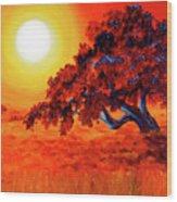San Mateo Oak In Bright Sunset Wood Print