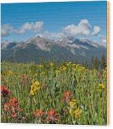 San Miguel Mountains Wood Print