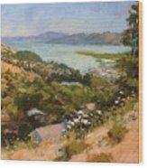 San Rafael Bay From Via La Cumbre, Greenbrae, Ca Wood Print