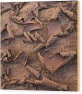 Sand And Mud Curls Wood Print