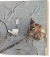 Sand And Shells Wood Print