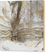 Sand Canyon Of San Clemente Wood Print
