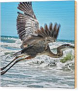 Sand Crane Wood Print