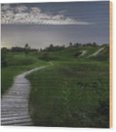Sand Dune Board Walk Wood Print