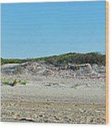 Sand Dune Panorama  Wood Print