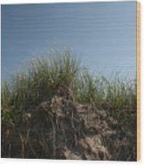 Sand Dunes IIi Wood Print