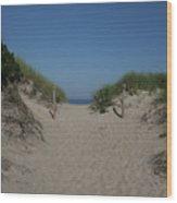 Sand Dunes Iv Wood Print