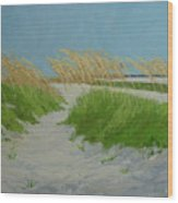 Sand Dunes  No 1 Wood Print