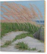 Sand Dunes  No 2 Wood Print