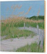 Sand Dunes No. 3 Wood Print