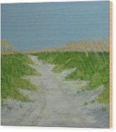 Sand Dunes No 4 Wood Print